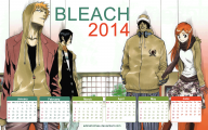 Bleach New Season 2014 24 Widescreen Wallpaper