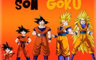 Son Goku 22 Anime Wallpaper
