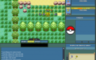 Pokemon Online  32 Cool Hd Wallpaper