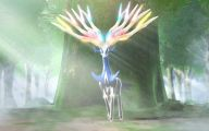 Pokemon X And Y  28 Widescreen Wallpaper