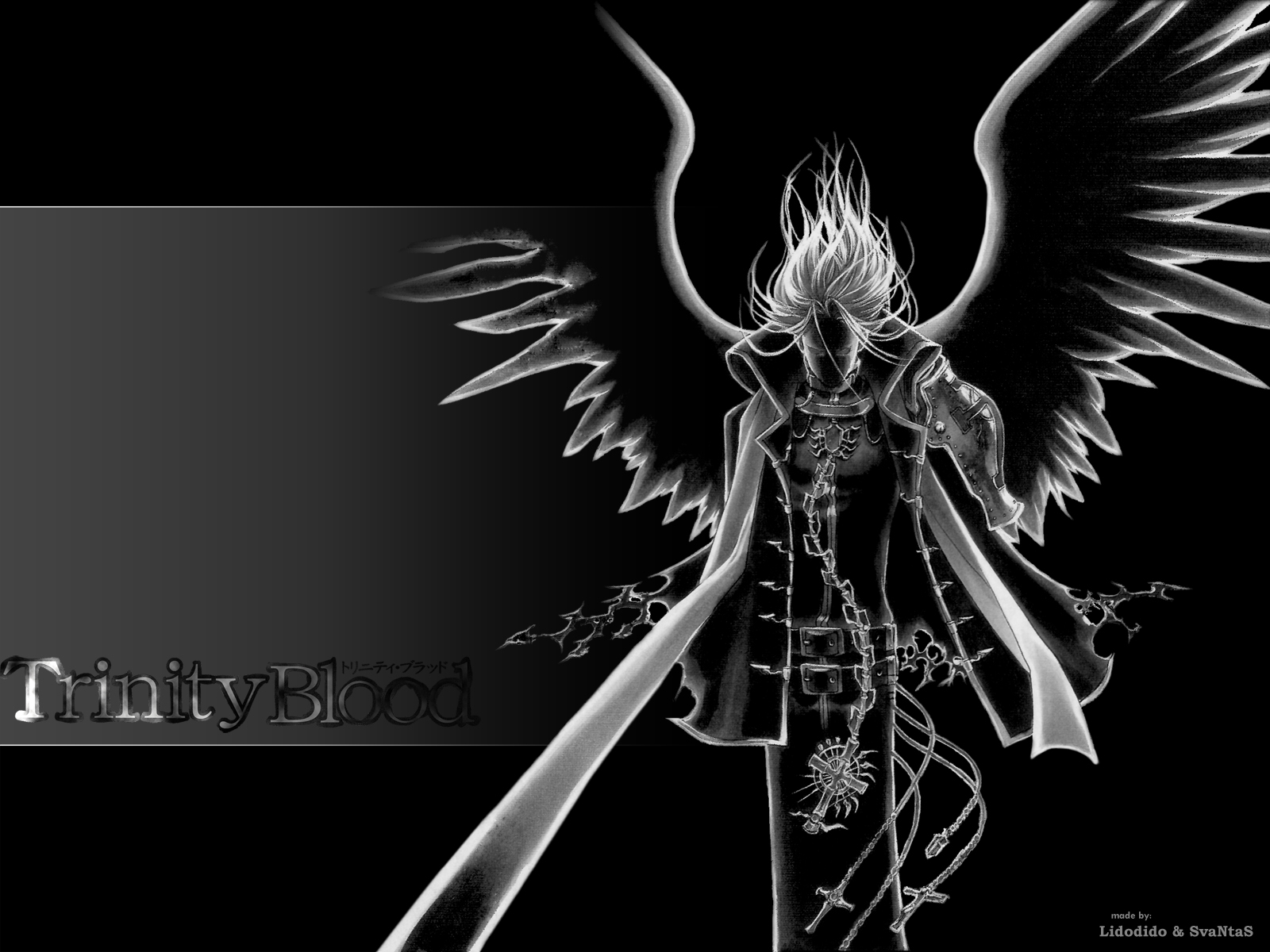 D Gray Man Wallpaper And Background Free Photos